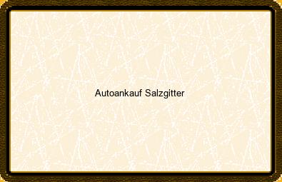 Autoankauf Salzgitter